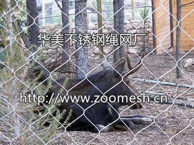 丝绳编动物_食草动物围栏网,鹿围网,鹿笼舍网、羚羊围栏网、长颈鹿围栏 ...
